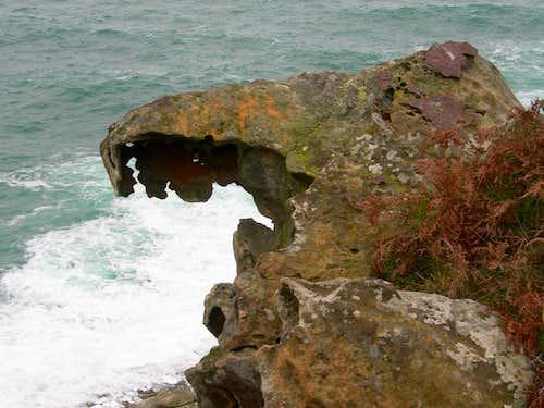 Stone jaws