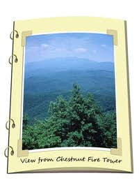Chestnut Fire Tower, NC
