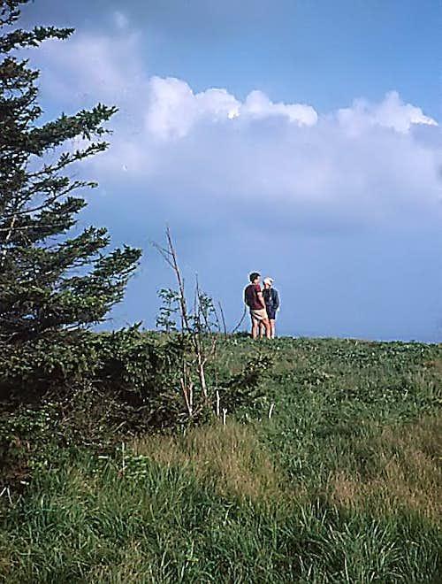 Round Bald - Roan Highlands
