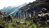 Zebra Wall, aptly named......