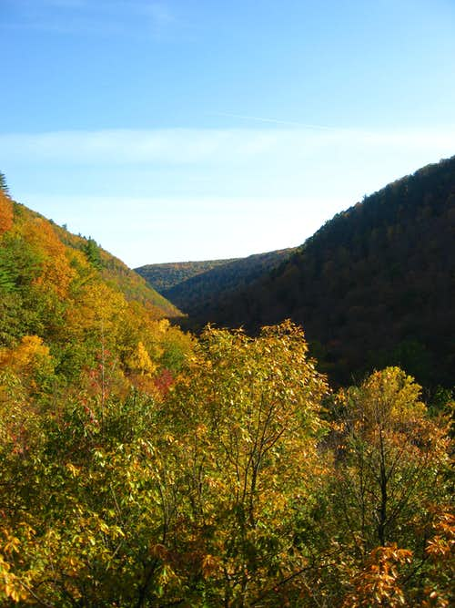 Fall at Pine Island Ledge