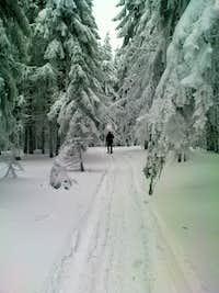 Backcountry ski in Gorce