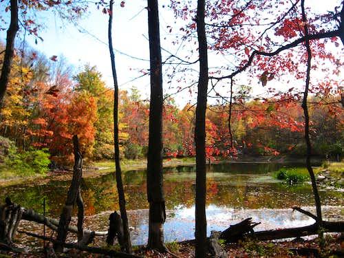Pond on Catoctin Mountain
