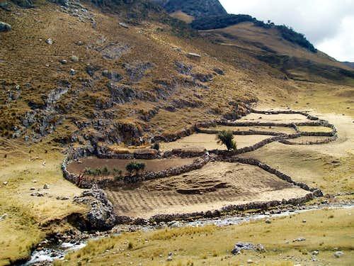 Huayhuash Farm