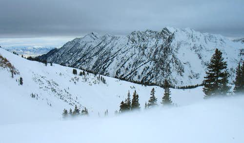Cottonwood Ridge from Collins Alta Lift