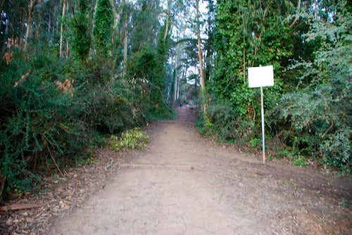 "South ""Trailhead"" for Davidson"
