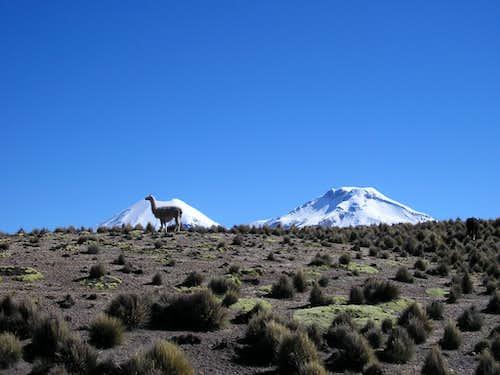 view of Pomerape and Parinacota from near to Sajama village