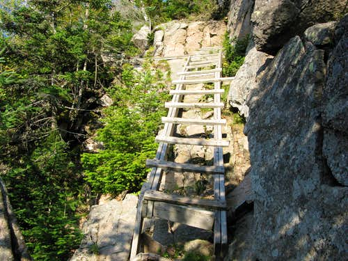 the ladders on the Hi-Cannon trail