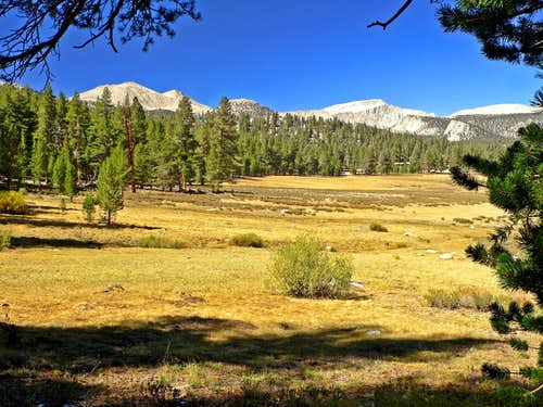 Cirque Peak and Mt. Langley from Horseshoe Meadows