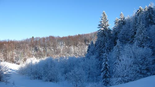 winterscape 2....