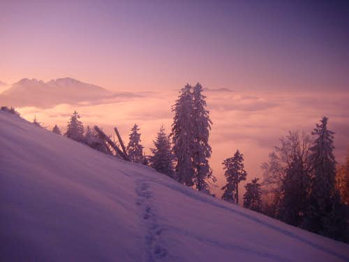 Evening impression of Allgäu Alps
