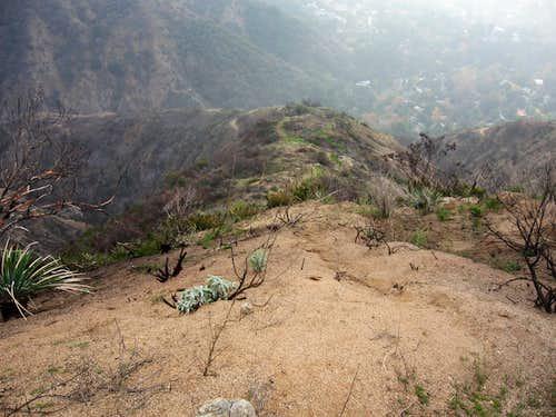 Jones Peak SE Ridge #2