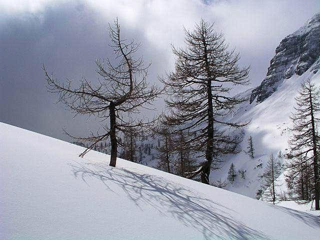 Below Debeli vrh. March 28th,...