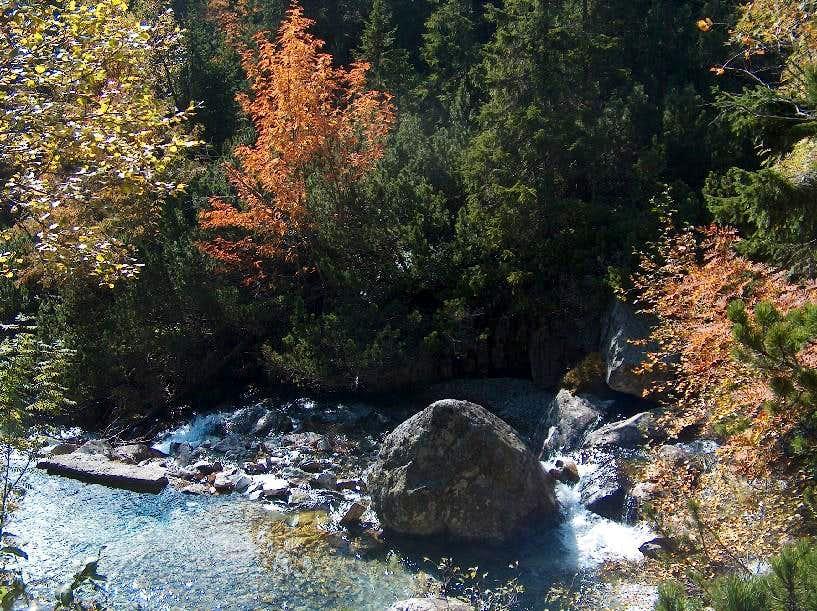 Back to Tatranska Lesna, Autumnal tones