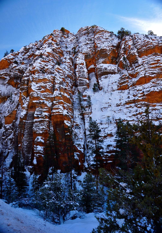 Red Cliffs of Utah