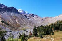 Glacier Basin - Mt. Rainier