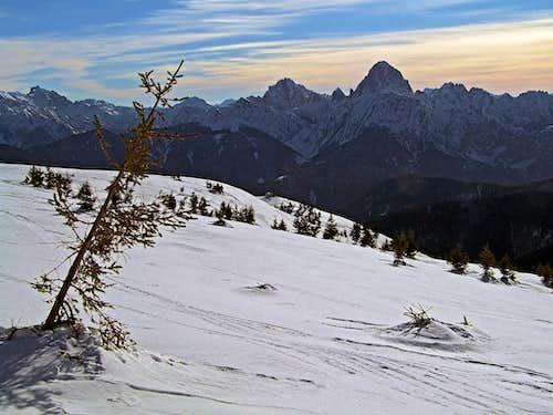 Creta Grauzaria and Monte Sernio from the SE ridge of Monte Dimon