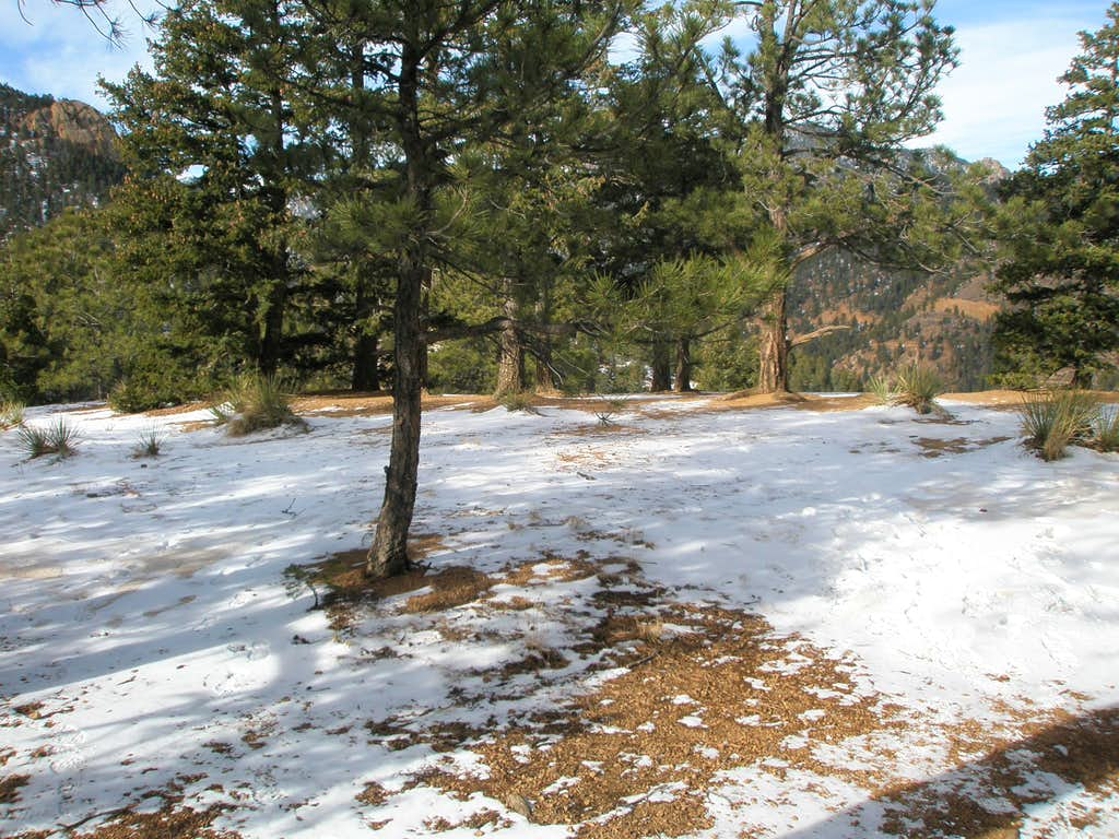 Mount Cutler Summit Area