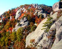 Seasons of Old Rag Mountain