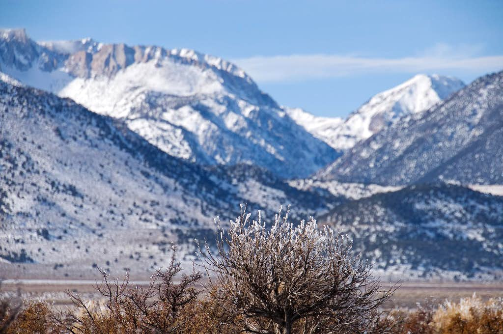 Mono Basin National Scenic Area