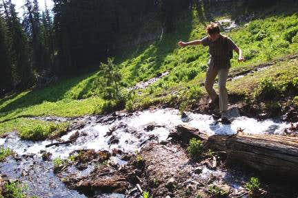 Avalanche Peak Stream