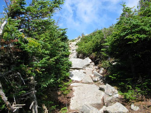 heading up Mt. Guyot