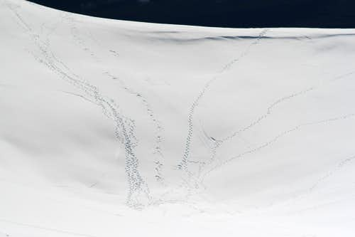 Snow Filled Crater
