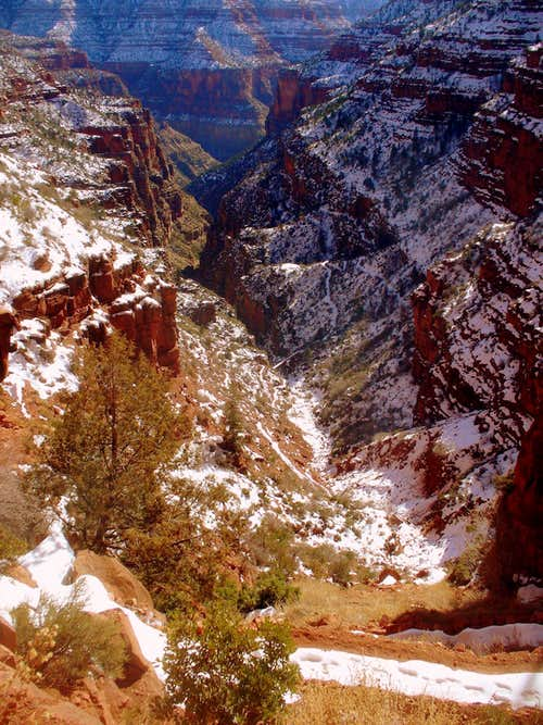 Trail from Supai to Redwall