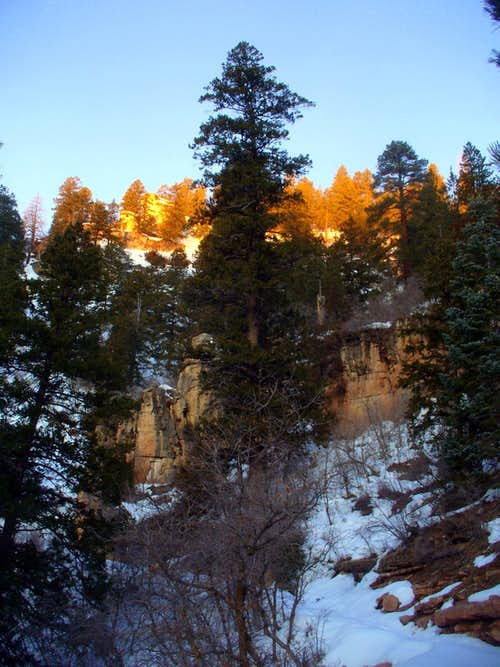 First rays of wintry dawn on N Kaibab