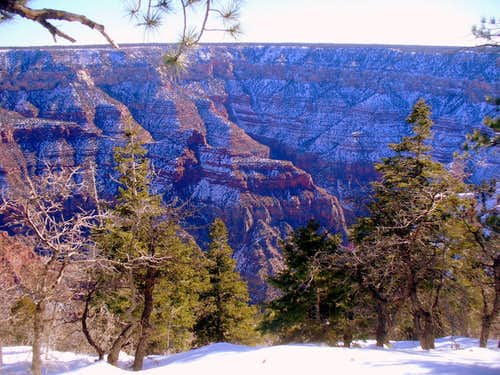 Roaring Spring Canyon in winter