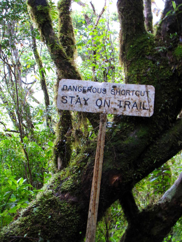 Dangerous Shortcuts on Blue Mountain Peak