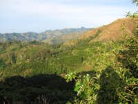 Looking Down to Abbey Green Coffee Plantation