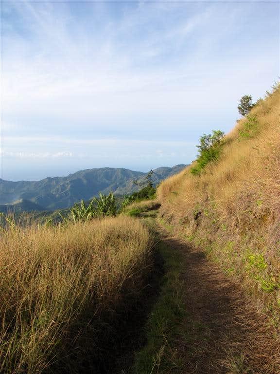 Blue Mountain Peak Trail