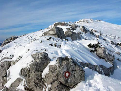 Towards the Snježnik summit