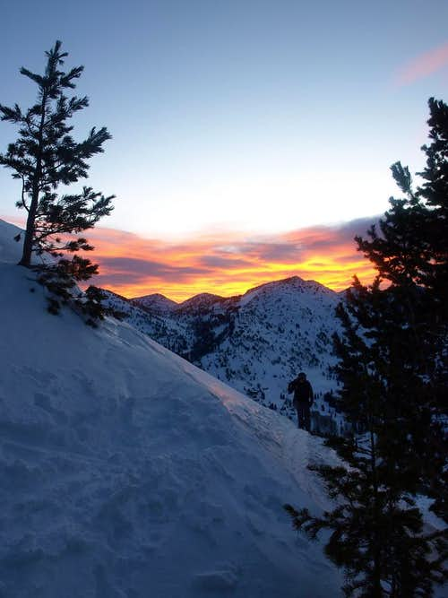 sunrise over Wolverine