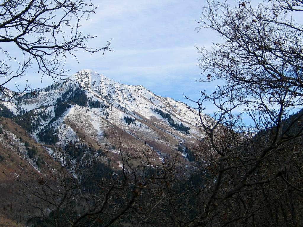 Provo Peak