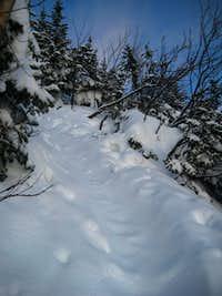 Fresh powder on the Lion Head Trail
