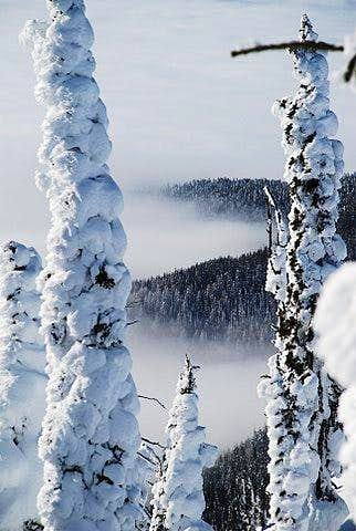 Montana Snow Ghosts