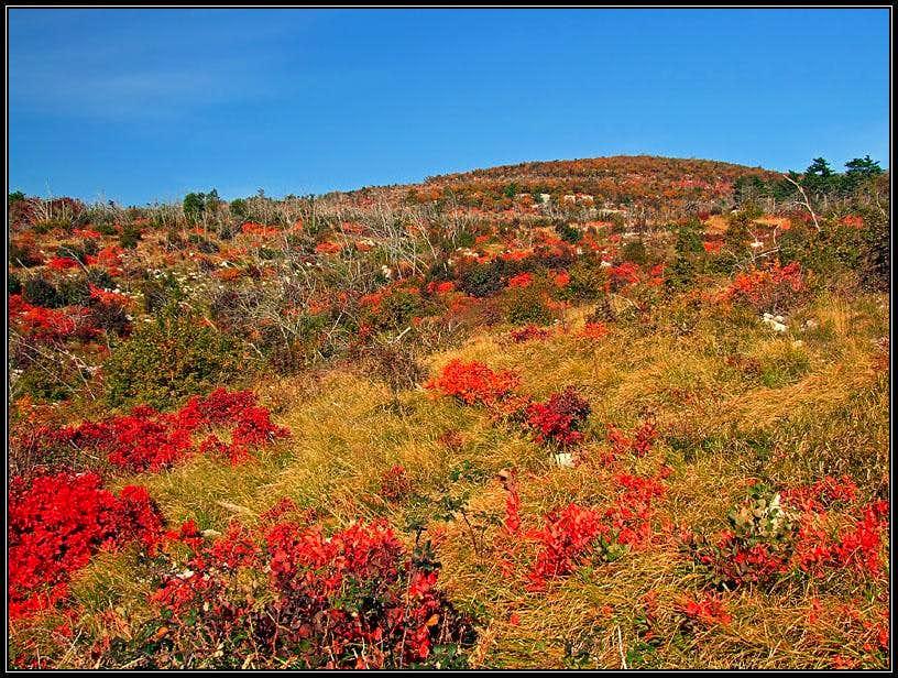 Autumn below Obruc mountain