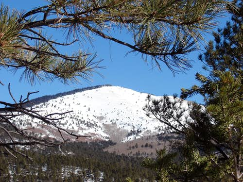 Mt Taylor