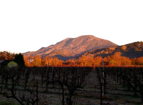 Mount Saint Helena From the South.