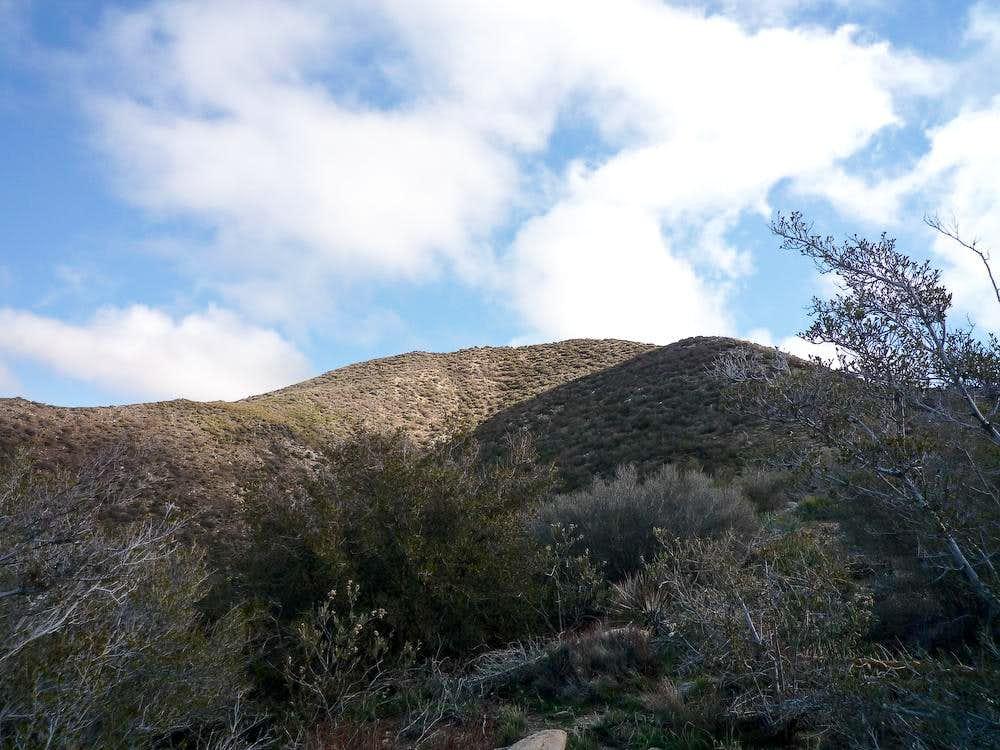 Cole Point West Ridge
