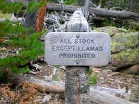 Llamas Welcome