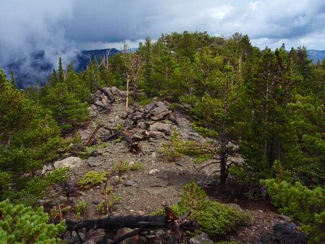East Slope from Upper Beaver Meadows Trailhead
