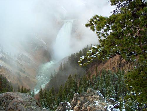 Yellowstone Falls in Mists