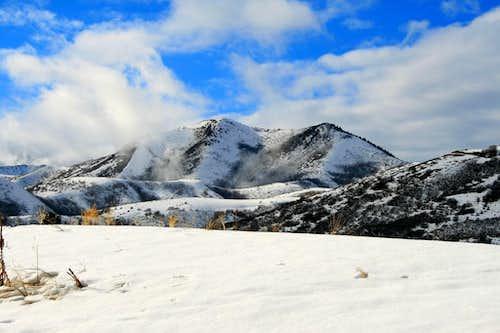 Dale Peak.