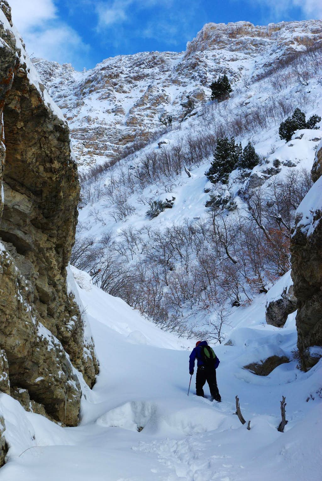 Snowshoeing SE of Ben Lomond