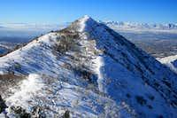 Perkins Peak.