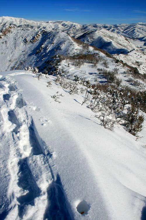 From the summit of Perkins Peak looking east.