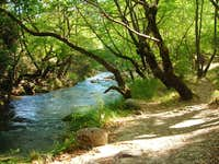 Alfeios river, Greece